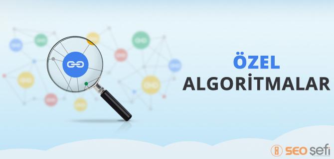 özel algoritmalar