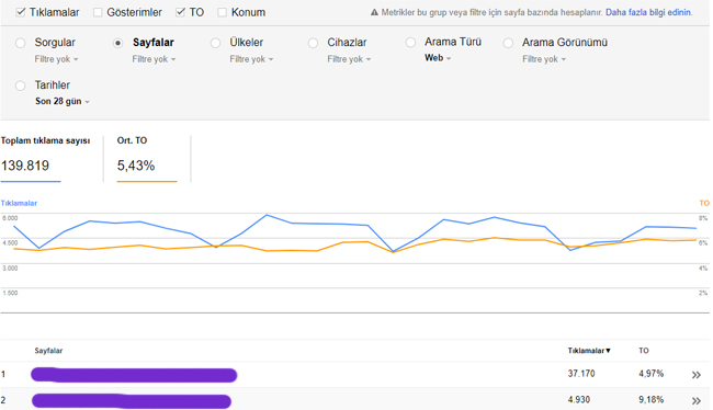 oogle Search Console TO sayfalar