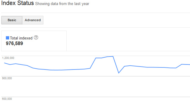 google dizin durumu