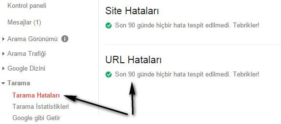 google tarama hataları